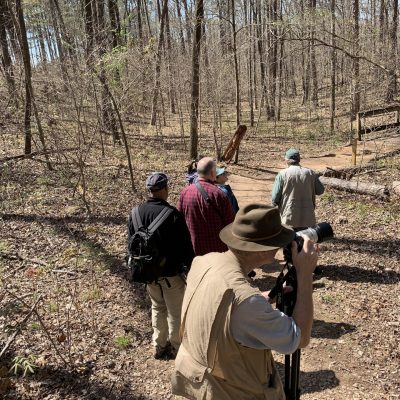 group of photographers capturing pictures of nature in wooded area