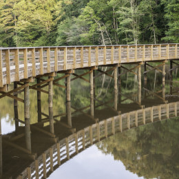 The wooden walkway over Alexanders Lake is an iconic landmark at Panola Mountain State Park.