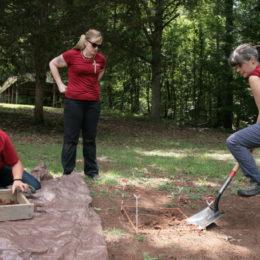 Testing the ground