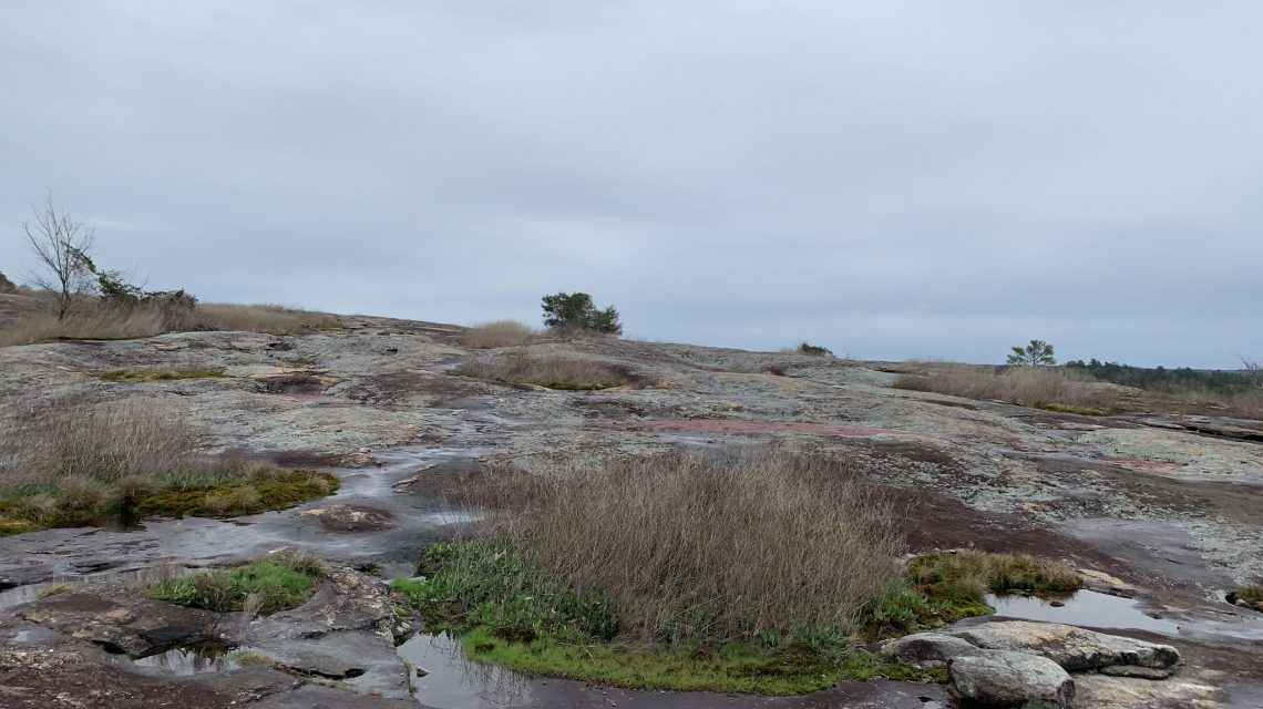 Insider Tips for the Best Hiking at Arabia Mountain