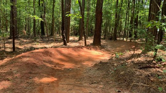 New Mountain Bike Trails in the AMNHA