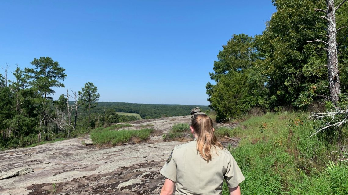 A Daisy Days Preview with Ranger Taylor