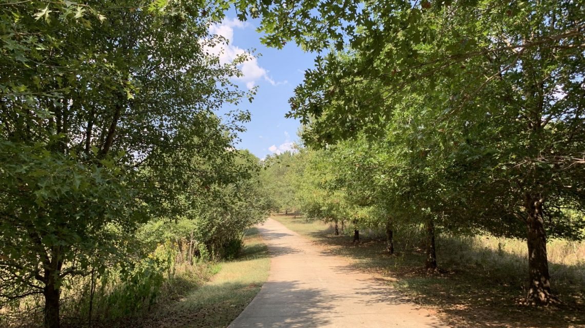 The 3 Best Springtime Hiking Trails with Shade in the NHA