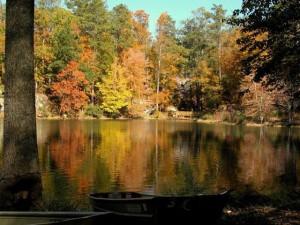 Lakeside view at Panola