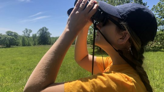 Birdwatching in the NHA