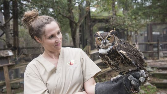 AWARE Wildlife Tours Are Back